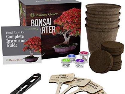 The Complete Kit to Easily Grow 4 Bonsai Trees from Seed with Comprehensive Guide & Bamboo Plant Markers - Planters' Choice Bonsai Starter Kit - Unique Gift Idea Bonsai