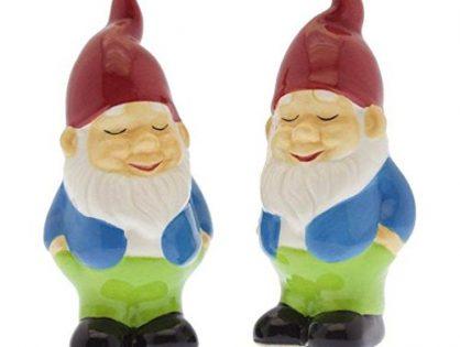 Salt & Pepper Set - Humble Gnome