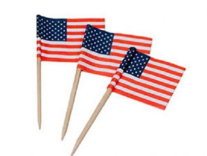 Darice 5300-99 100Piece, USA Flag Toothpicks