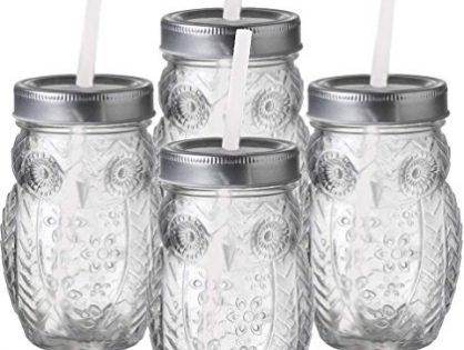 Circleware 69052 Owl Mason Jars Drinking Glasses with Metal Lids and Hard Plastic Straws Set of 4, Glassware for Water Beer and Kitchen & Home Decor Dining Beverage Gifts, 15 oz, Clear Sippers