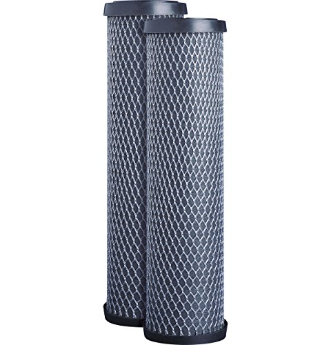 GE FXWTC Whole Home System Replacement Filter Set, Pack of 2