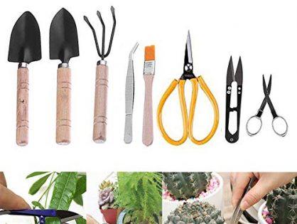 sincerely gift Bonsai Tool Set, Bonsai Trimming Tools Kit Succulent Gardening Tools Set (8 Pieces)