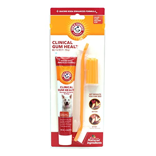Arm & Hammer Clinical Care Dental Gum Health Kit for Dogs | Contains Toothpaste, Toothbrush & Fingerbrush | Soothes Inflamed Gums, 3-Piece Kit, Chicken Flavor