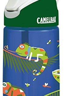 CamelBak Kids Eddy Water Bottle, 0.4 L, Iguanas