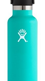 Hydro Flask 24 oz Double Wall Vacuum Insulated Stainless Steel Leak Proof Sports Water Bottle, Standard Mouth with BPA Free Flex Cap, Mint